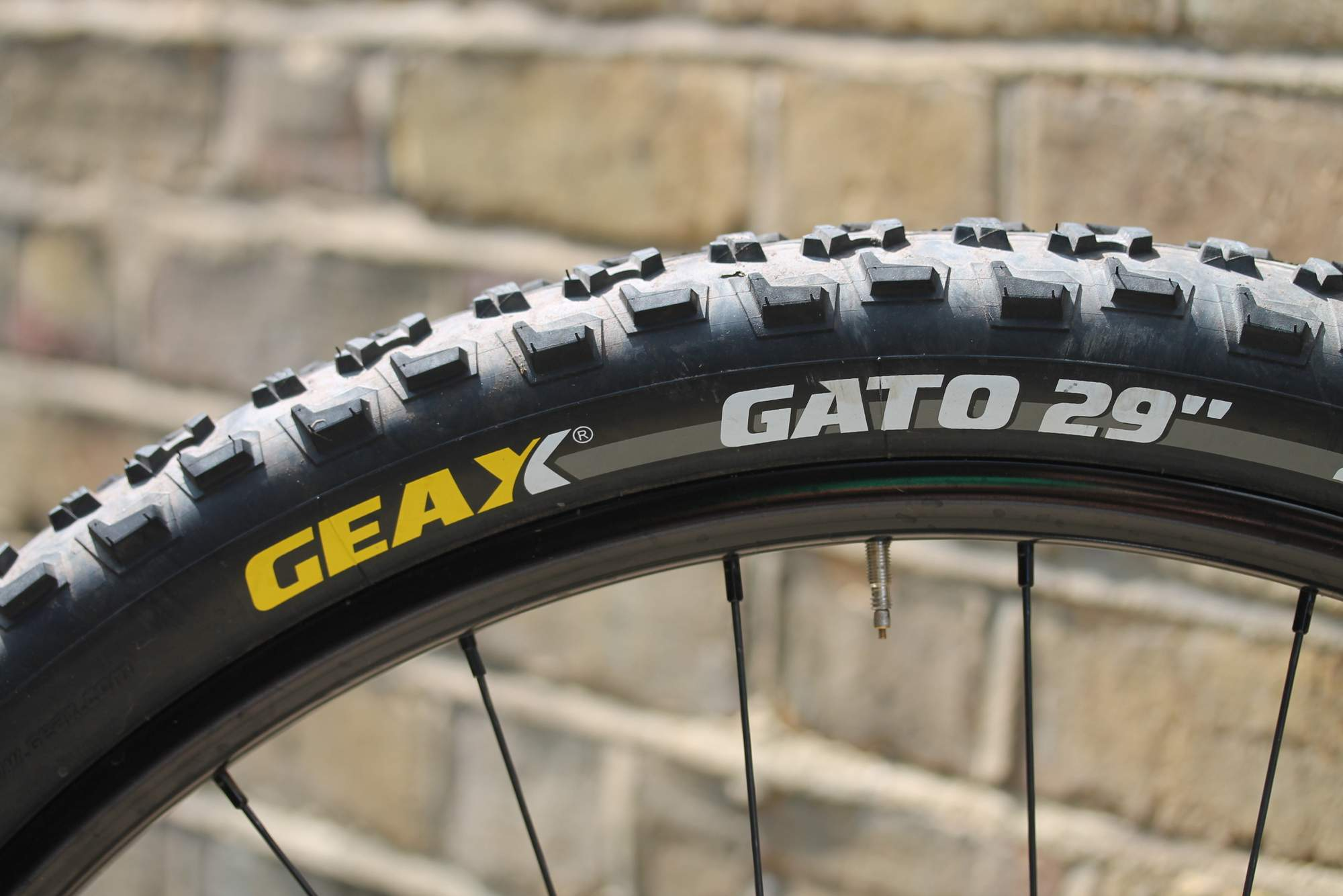 Maxxis CrossMark 29 Tyre Review Bike