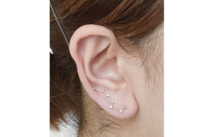 Cool Ear Piercings 1
