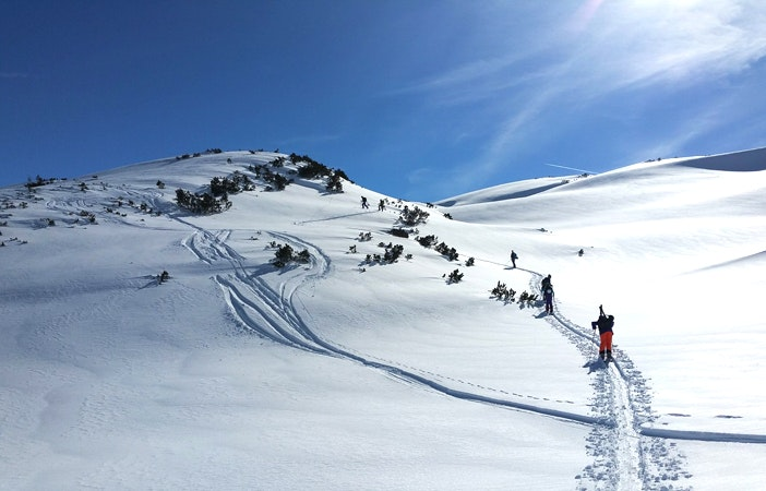 Chicky Clinics Backcountry Skiing