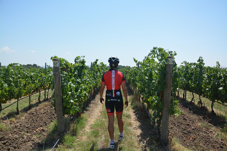 Tuscany Etruscan Coast cycle road bike mountain bike 5
