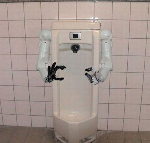The-Helpful -Toilet-Robot-Strange
