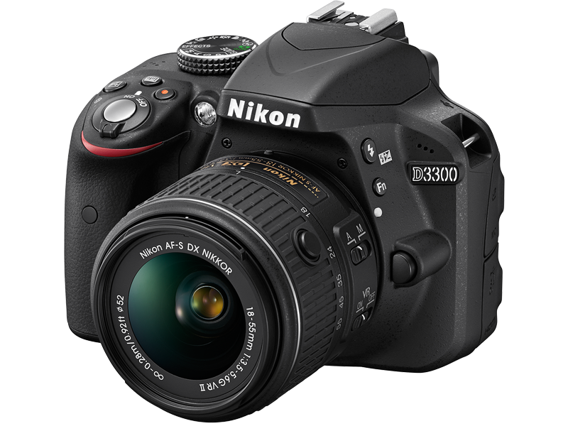 Best Cameras for Travelling NIKON D3300 Review and Tips
