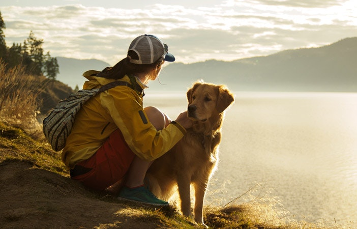 Adventure-Dog-Breed-Outdoors.