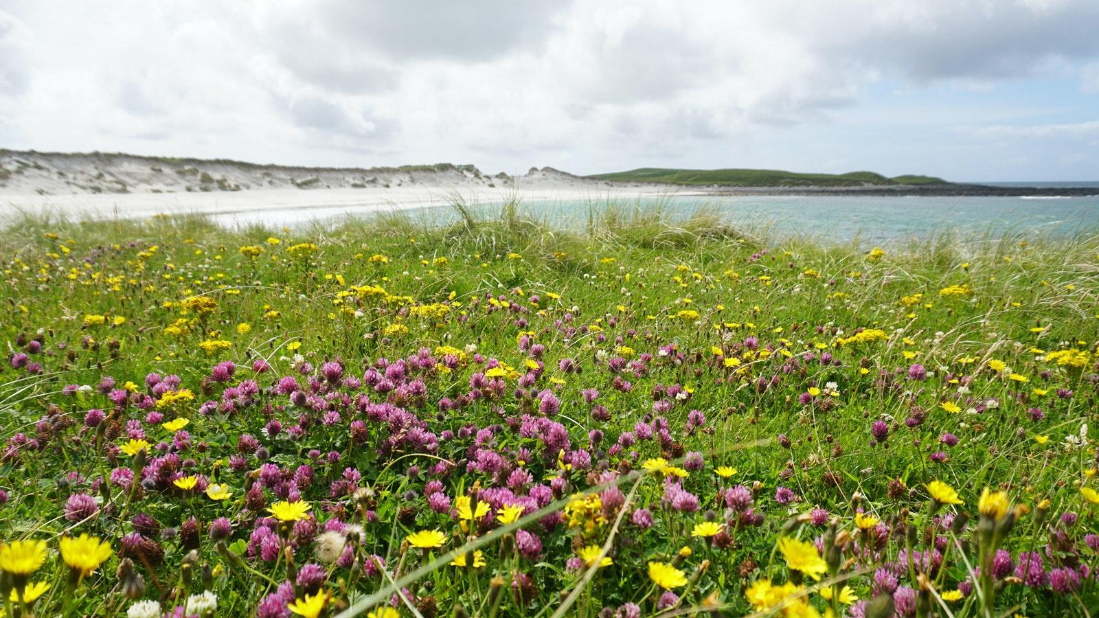 Hebridean-Way