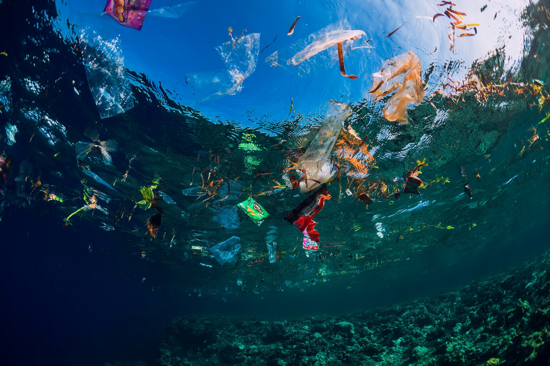 Plastic-In-The-Ocean