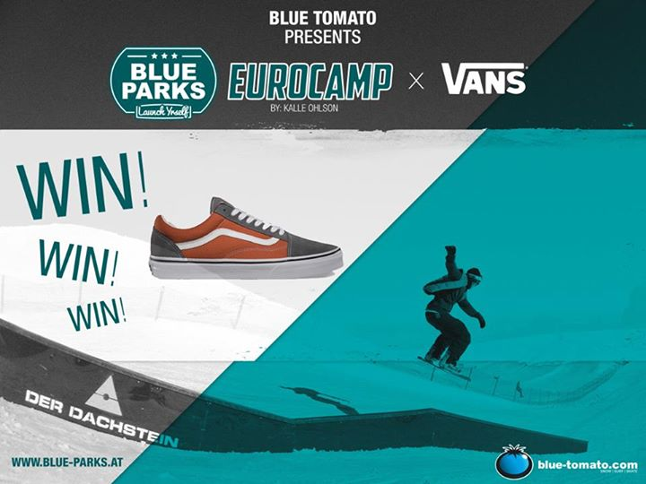 Vans Old Skool Shoes with Blue Parks