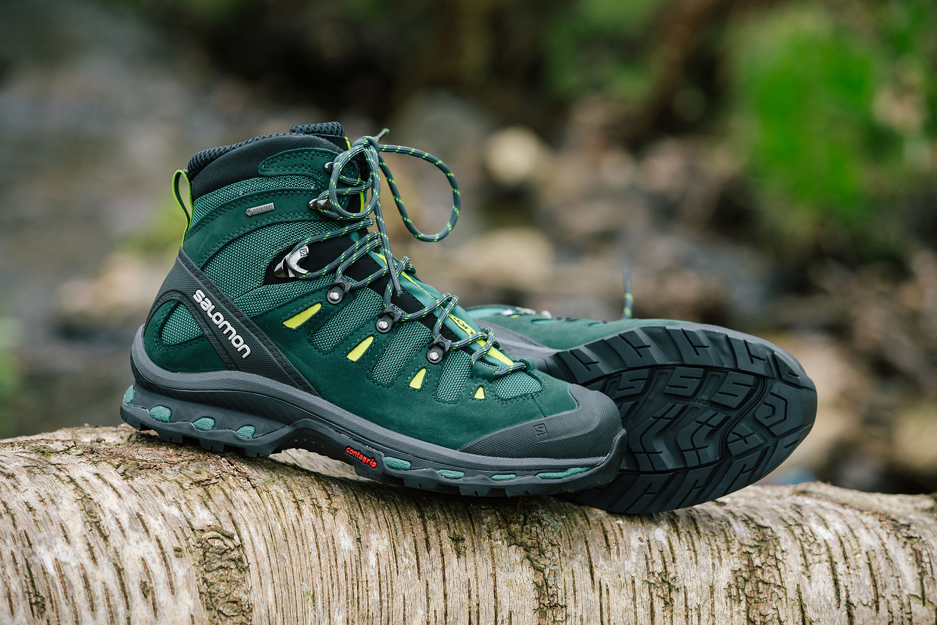 Salomon Quest 4D 2 Goretex