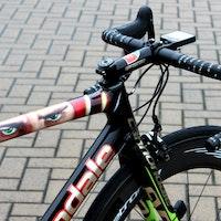 Pro bike: Peter Sagan