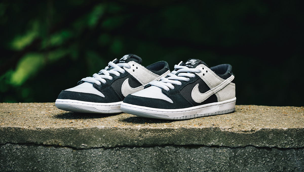 Publicidad Labor oyente  Nike SB - Skateboard Shoe Review - Zoom Dunk Low Pro...