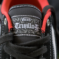 Vans TNT Advanced Prototype Weartest with Josh Gregory skateboard shoe vans skate shoe