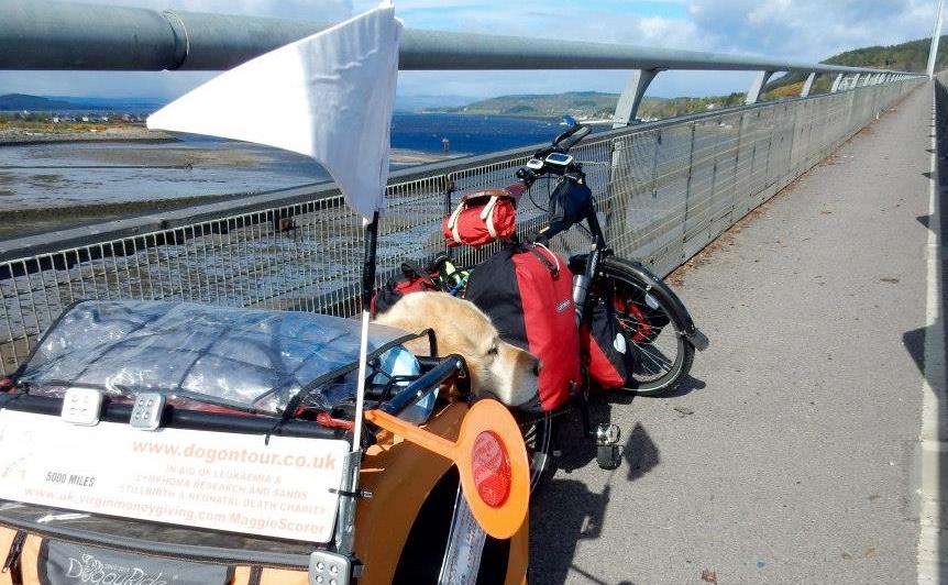 maggie and oscar bike ride