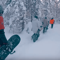 dcp-yes-snowboards-deeply-rooted